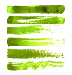 Set of green brush strokes vector