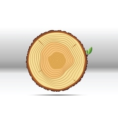 Tree growth rings wood vector