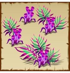 Tubular purple and green marine seaweed vector image