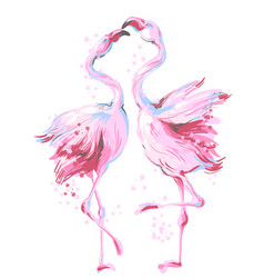Two beautiful pink flamingos dancing in honeymoon vector
