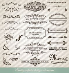 Calligraphic design vector image vector image