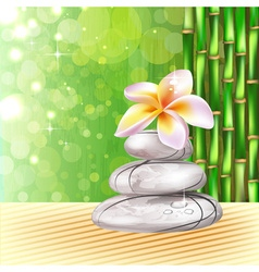 Spa Orchid Design vector image vector image