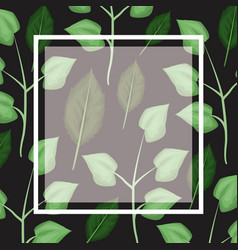 black card background with decorative leaves vector image