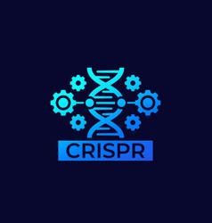 crispr genome editing icon vector image