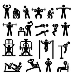 Gym gymnasium body building exercise training vector