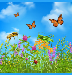summer insects realistic vector image