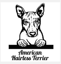 american hairless terrier - peeking dogs - breed vector image