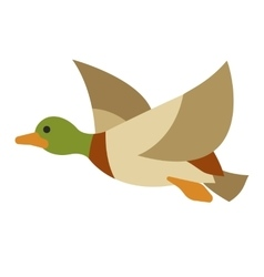 Flying duck on isolated background vector