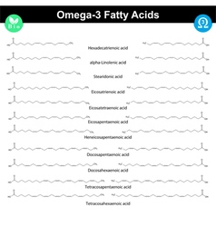 Omega-3 unsaturated fatty acids vector