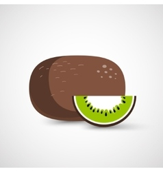 Vecor whole kiwi fruit and his sliced segment vector image