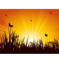 summer meadow sunset vector image vector image
