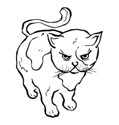 Angry Kitty Line Drawing vector