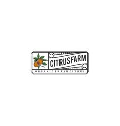 Citrus logo with a vintage style design vector
