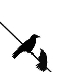 Crows wire vector