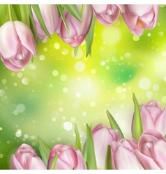 Pastel Spring Tulips Border EPS 10 vector image