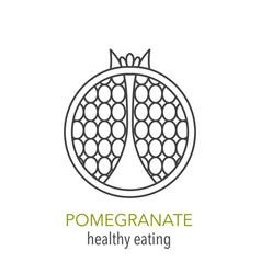 Pomegranate line icon vector