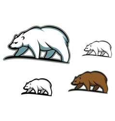 Arctic bears vector