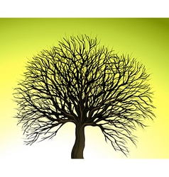 Big Tree on Green Background vector image vector image