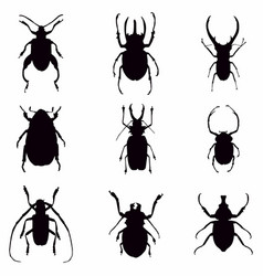 bug silhouettes vector image