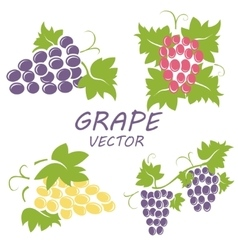 Flat grape icons set vector