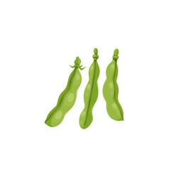 Green peas bean pods farm agriculture plant icon vector