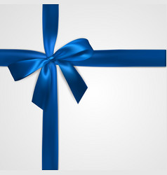 realistic blue bow with ribbons isolated on white vector image