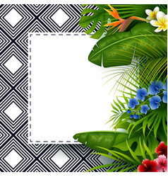 tropical leaves with white frame paper vector image