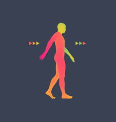 Walking man 3d human body model vector