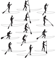 paddle boarding silhouettes vector image