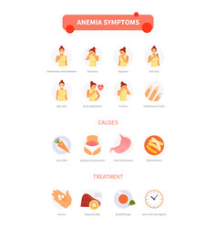 anemia infographic vector image