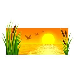 landscape of sunset at lake vector image