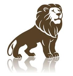 Lion018 vector