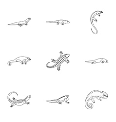 Lizard icons set outline style vector image