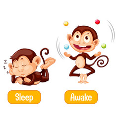Opposite words with sleep and awake vector