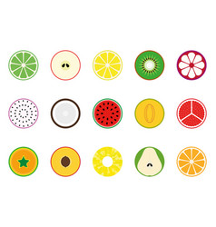 collection of fruit icons vector image