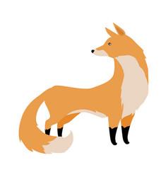 fox in flat design vector image vector image