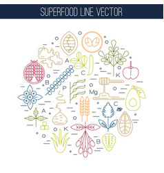 color superfood line icons round vector image