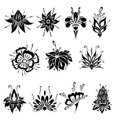 abstract silhouette of blossom flower pack vector image
