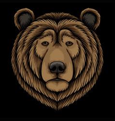 bear head vector image