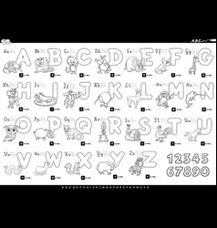 cartoon alphabet with animals color book vector image