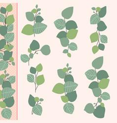 collection flat design eucalyptus branches vector image