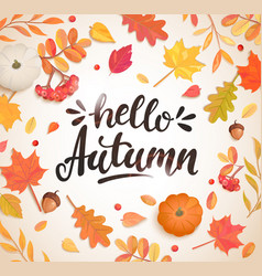 Hello autumn banner in frame autumn leaves vector