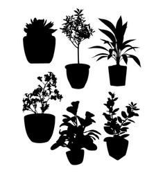 plant pot silhouettes vector image