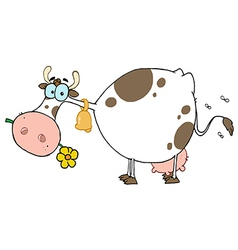 Cow Different Color White vector image vector image