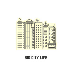 thin line skyscrapers icon vector image