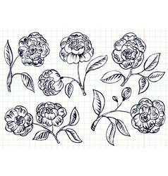 simplicity rose set vector image vector image