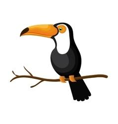 toucan bird exotic icon vector image