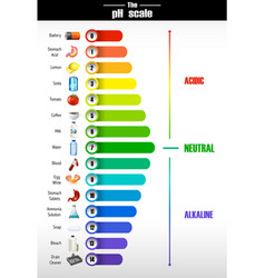 a science of ph scale vector image