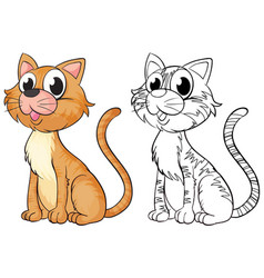 animal outline for cute cat vector image