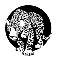 Black and white silhouette of a leopard in a black vector